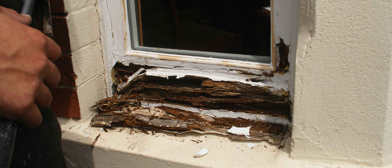Rotten sills are common problems in most wooden windows.